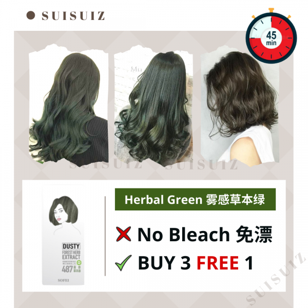 SOFEI DUSTY HERB EXTRACT COLOR CREAM - 487 HERBAL ...